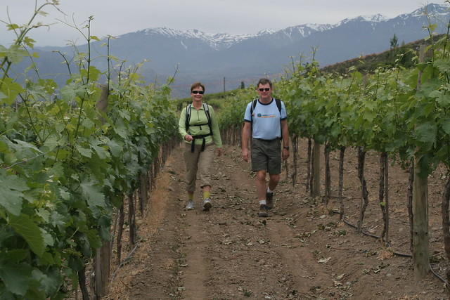 Chile and Argentina Active Wine Tour
