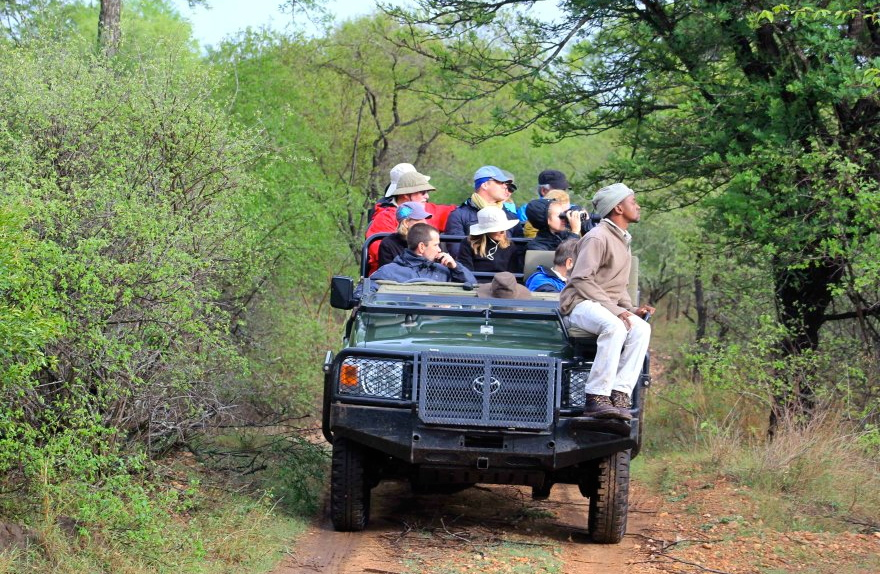 Zephyr group on safari in South Africa