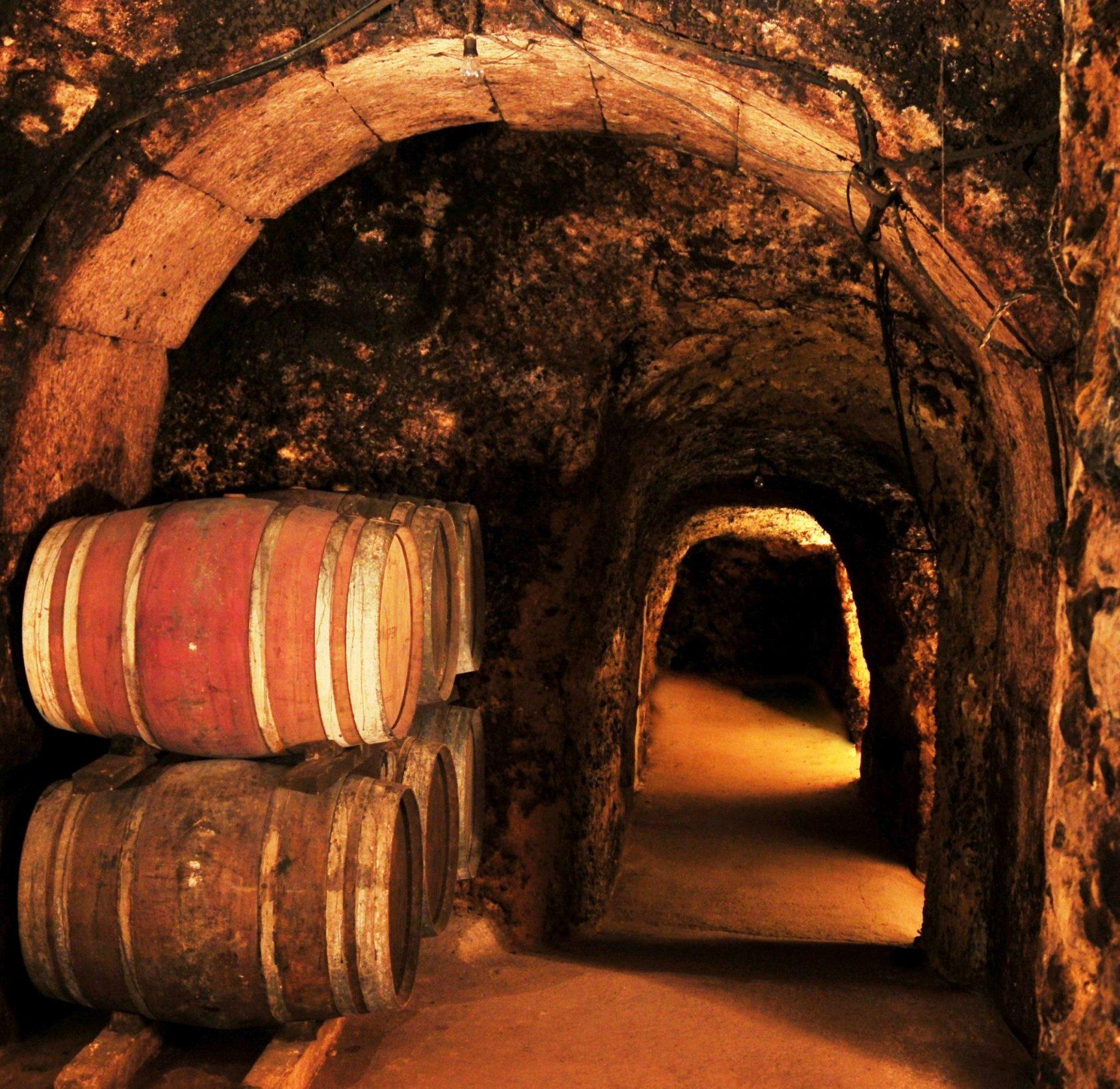 Help a Winery: Bodegas Carlos San Pedro